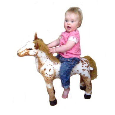 26 inch sit on horse
