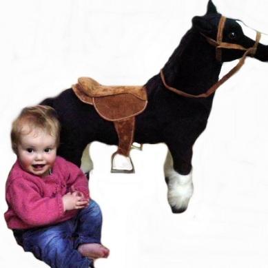 30 inch black horse