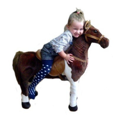 36 inch sit on horse 3